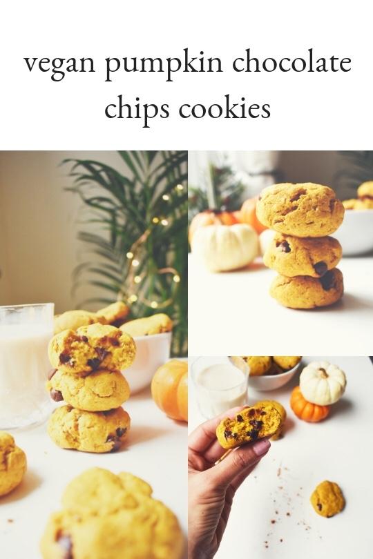 Vegan Pumpkin Chocolate Chip Cookies –Gabriela
