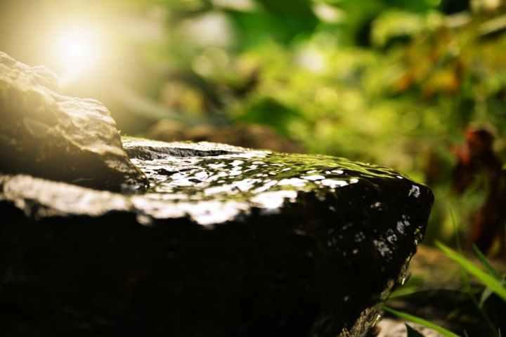 A Simple Piece of Gratitude – Steph'sLife